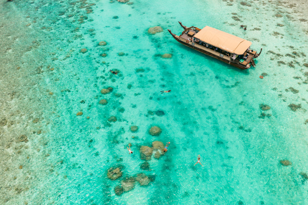 Snorkelling from the boat with Vaka Cruises