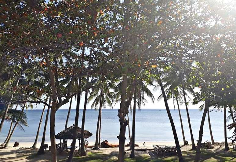 The Bruce Resort view