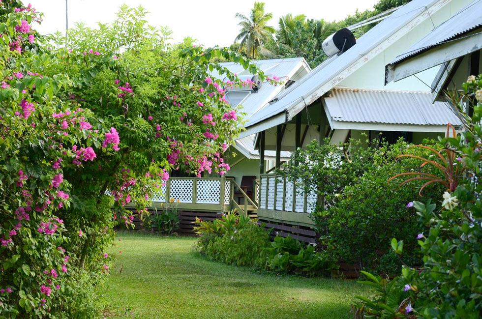 The garden at Gina's Garden Lodges