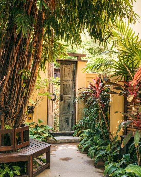 Buri Rasa's garden