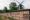 Slottsträdgården insect wall
