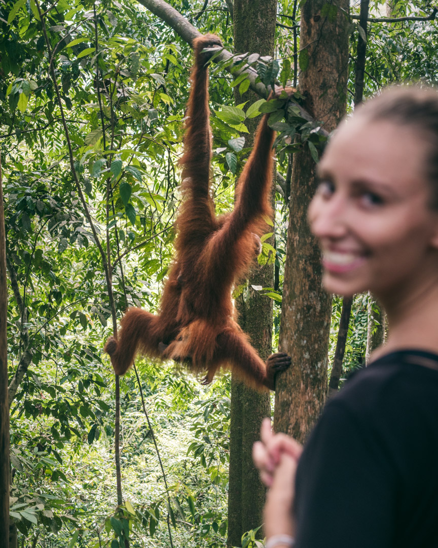 Victoria with orangutan