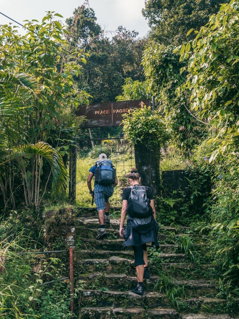 Climb to Peace Pagoda