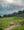 Cows dot the landscape at Seiser Alm / Alpe di Siusi