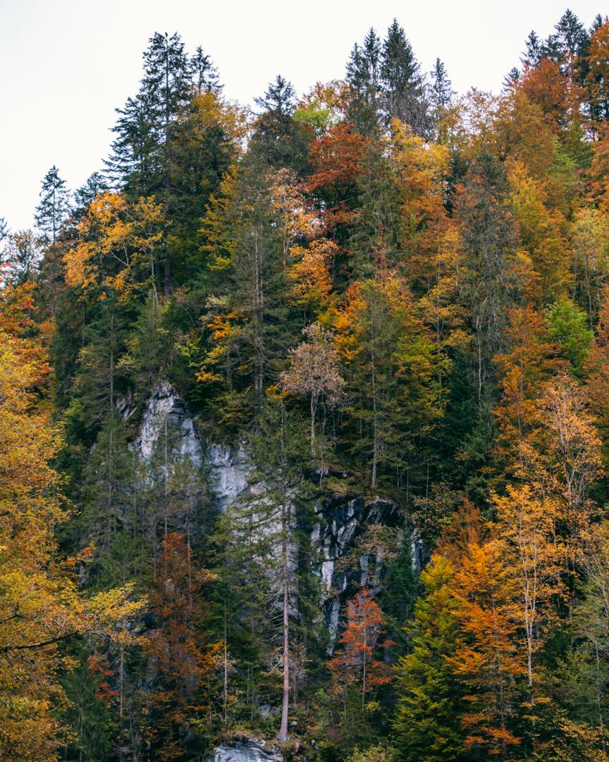 The autumn colours in Garmisch-Partenkirchen