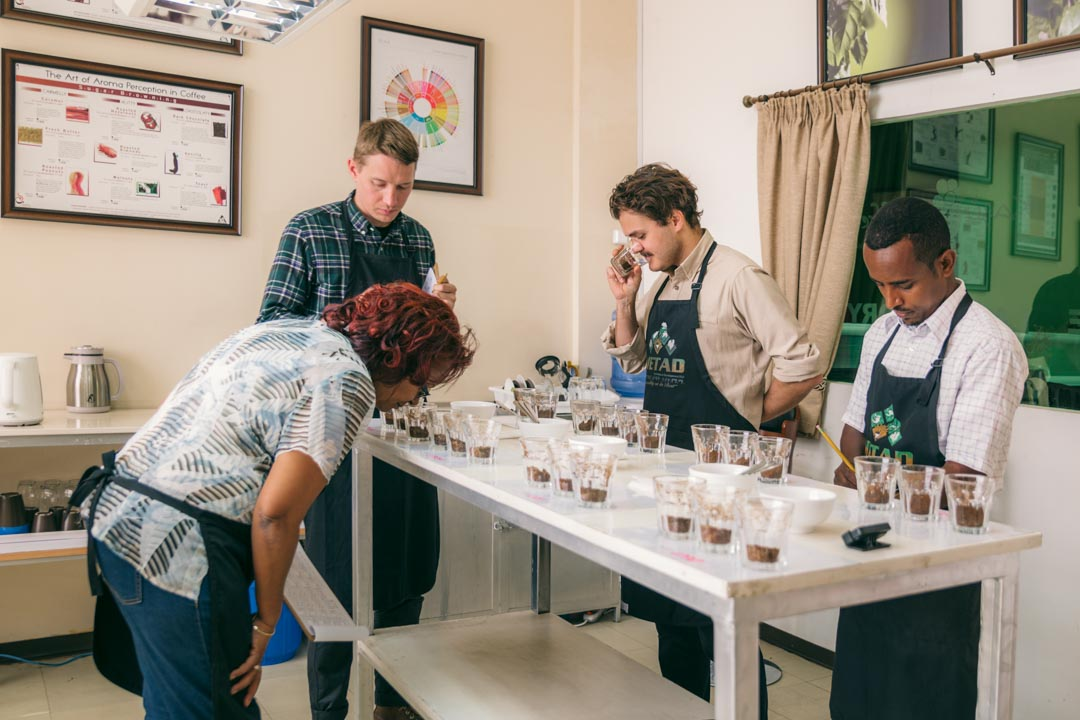 Casper and Lukas from Coffee Collective cups coffee at METAD in Ethiopia