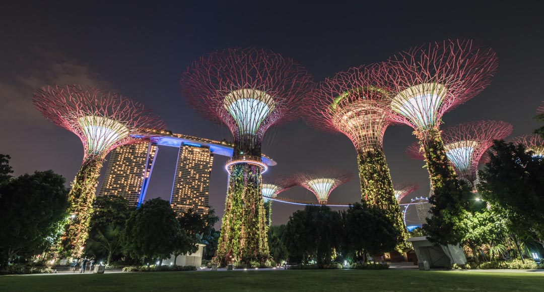 Grassfield in Gardens by the Bay