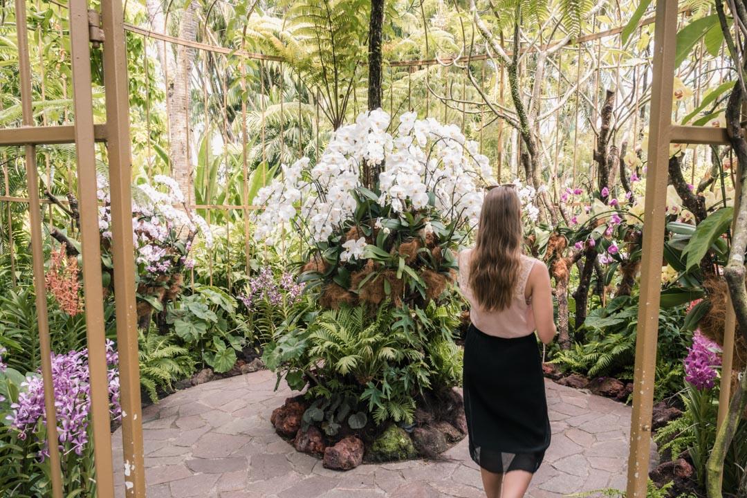 Victoria in Orchid Garden