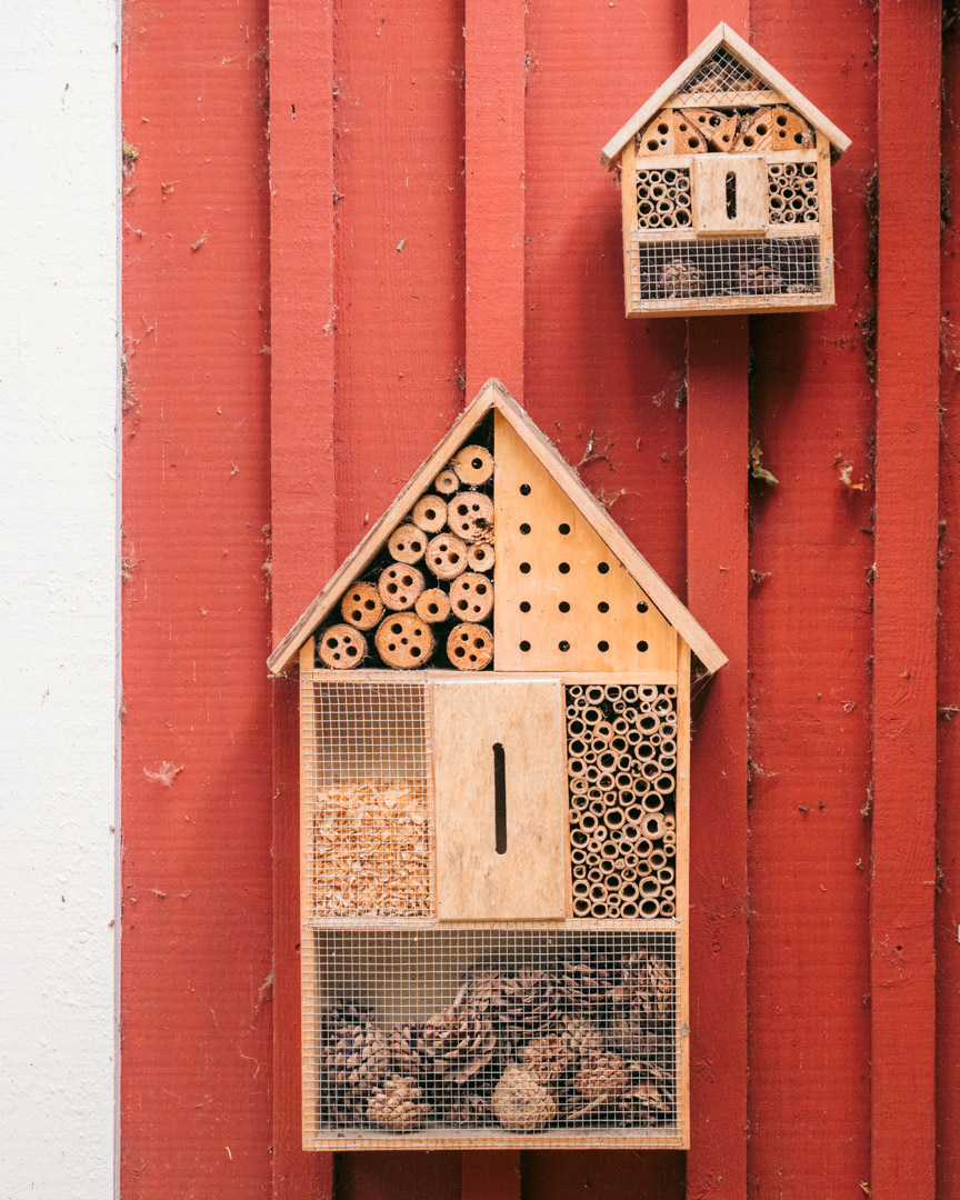 Insect hotels in the national park