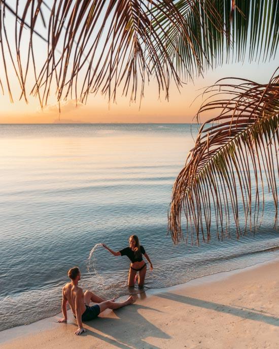 Ocean, beach and palm trees