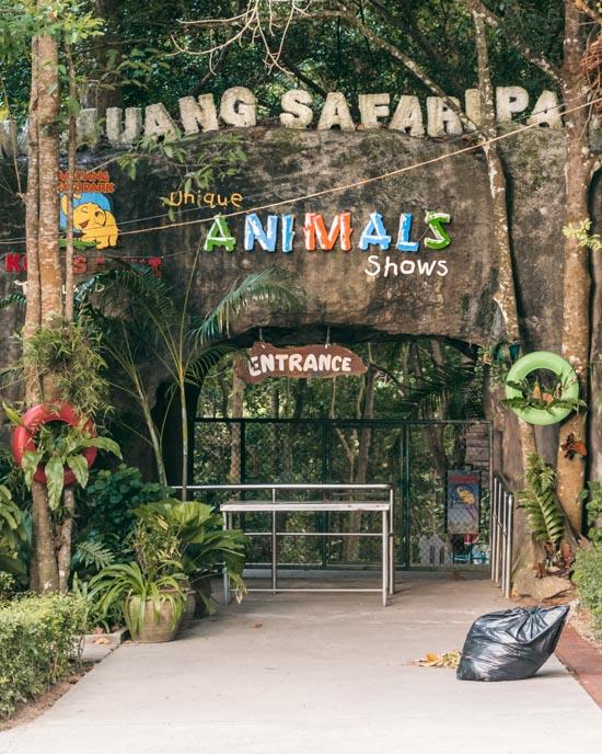 Thailand animal show