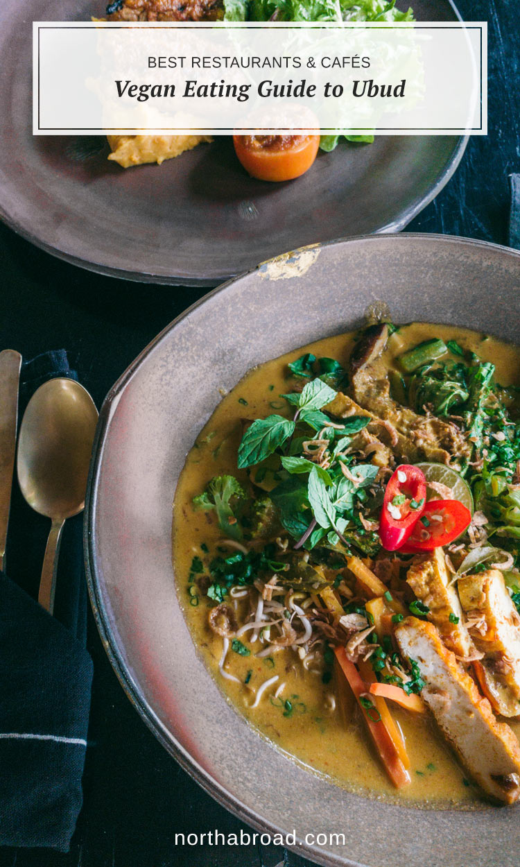Everything you need to know about finding the most delicious vegan and vegetarian places in Ubud, Bali in Indonesia.