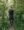 Primus Trail FG